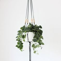 MORE COLORS // Large Hanging Planter without Pot / Modern Macrame Planter / Natural Wood Bead Plant Hanger / Minimalist Home Decor on Etsy, $67.00