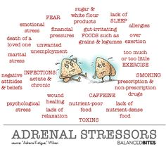 The Real Deal on Adrenal Fatigue