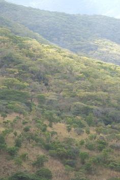 Mountain valleys, Tanzania