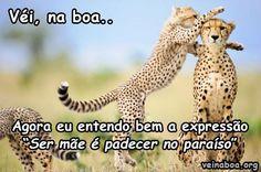 Imagem de http://veinaboa.org/wp-content/uploads/2013/01/PadecerParaiso.jpg.