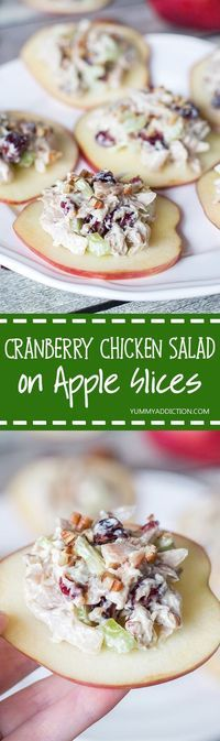 If you are looking for a perfect appetizer, this Cranberry Chicken Salad on crunchy and fresh apple slices is exactly what you need! | http://yummyaddiction.com