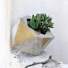 Make this stunning geo faceted cement planter with this step-by-step tutorial.