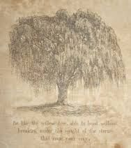 Image result for weeping willow tree quotes