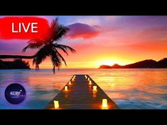 🔴 Relaxing Music, Meditation Music, Healing Music, Spa Music, Zen, Sleep, Yoga, Study MusicWelcome everyone! I hope your are having an amazing Day/Night! Get back loosen up your body take a deep breath and enjoy my music with the beautiful imagery from all around the world!   All music composed by Astro Universe - Relaxing Music  This relaxing sleep music and zen music provides great opportunity for meditation for sleep and relaxation.   Use My relax music and yoga music for sleep… Meditation Music, Yoga Music, Meditation Practices, Calming Music, Relaxing Music, Sleep Relaxation, Sleep Yoga, Deep Sleep Music, Stress Relief Music