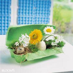Dekorieren mit Eierkartons