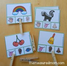 Free five senses activity for preschool and kindergarten - T.-Free five senses activity for preschool and kindergarten – The Measured Mom five senses preschool activity - Five Senses Preschool, 5 Senses Activities, My Five Senses, Preschool Themes, Preschool Science, Montessori Activities, Preschool Lessons, Preschool Classroom, Preschool Learning