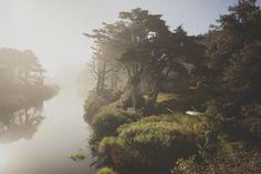 Wybrzeże Oregonu i niezwykłe światło – zdjęcia |