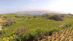 OliveGreen03/15  #segwayviews #gozoseeing #segway #tour #gozo #malta #eco #sightseeing #gozosegway