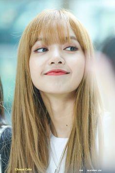 Your source of news on YG's biggest girl group, BLACKPINK! Please do not edit or remove the logo of. Kim Jennie, Jenny Kim, Kpop Girl Groups, Kpop Girls, Forever Young, Memes Blackpink, Rapper, Lisa Black Pink, Lisa Blackpink Wallpaper