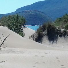 Le dune della feniglia