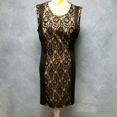 Enfocus Studio Dress With Lace Overlay