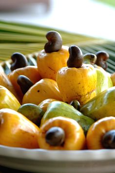 .caju brazilian fruit
