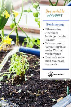 Das perfekte Hochbeet: Winterschutz.  Wir zeigen Euch zehn Tipps für ein perfektes Hochbeet sowie die richtige Bewässerung! Mehr dazu bei Plantura. #hochbeet #bewässerung