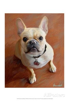 Sophie French Bulldog Prints by Robert Mcclintock at AllPosters.com
