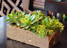 Think outside the box, and find creative uses for leftover pavers....like…
