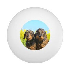 Two Cute Dachshund Dogs Dackel Portrait Photo Ping Pong Ball - animal gift ideas animals and pets diy customize