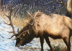 Moose Art, Paintings, Winter, Animals, Oil, Winter Time, Animales, Paint, Animaux