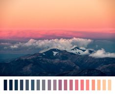If you're looking for some color inspiration, there are a plethora of premade color palettes and schemes out there just waiting to be found.