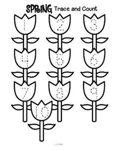 Ciclo de la flor.A los alumnos les encanta como cambia una