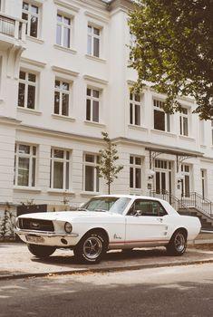 Just old Mustangs