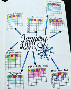 Monthly Mini Goals - January 2017  Bullet Journal