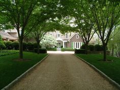 Beautiful Driveway & Entrance to a Beautiful House
