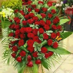 A Garden Of Beautiful Flowers Exotic Flowers, Outdoor Plants, Rose Bouquet, Ikebana, Beautiful Roses, Red Roses, Planting Flowers, Flower Arrangements, Christmas Wreaths