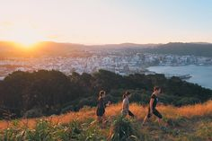 Where's your favourite spot to watch the sunset in Wellington? Just caught tonight's from Mt Vic Lookout