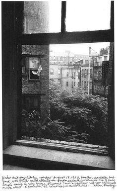 "Alan Ginsberg // ""View out my kitchen window August 18,1984, familiar Manhattan backyard, wet brick-walled Atlantis sea garden's ailanthus [stinkweed Tree of Heaven] boughs waving in rainy breeze, Stuyvesant Town's apartment roof two blocks north on 14th street. I focused on the raindrops on the clothesline."""