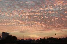 cotton candy skies #skies #dawn #beautiful