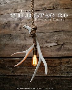 This is the Antler Pendant light. The electrical cord has been hand wrapped inside of 3/4 Manila rope and then looped and attached to the antler.