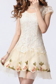 Apricot Short Sleeve Embroidery Lace Organza Dress