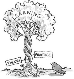 practical education vs theoretical education What emerged as a pivotal parameter in designing educational interventions is to   education revisited: theoretical assumptions and practical implications: a.
