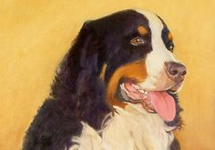 Bernese Mountain Dog Art Print Matted or Unmatted by PTarlowArt, $14.00