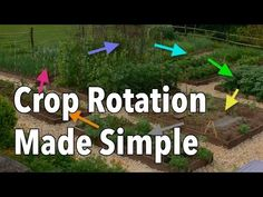 Learn how to practice crop rotation for healthier soil and a more successful home vegetable garden. Vegetable Garden Planner, Veg Garden, Edible Garden, Moon Garden, Organic Gardening, Gardening Tips, Sustainable Gardening, Kitchen Gardening, Farming