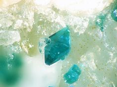 Spangolite. Mex Tex Mine, Socorro Co., New Mexico Taille=1 mm Copyright Hannes Osterhammer