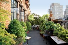 Want to be Alec Baldwin's Neighbor? Greenwich Village New York Penthouse for Sale New York Penthouse, Penthouse For Sale, Interior Design Magazine, Ireland Vacation, Ireland Travel, Outdoor Spaces, Outdoor Decor, Rooftop Terrace, Rooftop Gardens