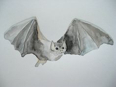 ORIGINAL Watercolor Bat by RaceStreetStudios on Etsy, $25.00