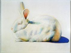 Thiebaud Rabbit