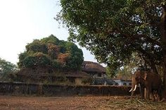 Ruins of the Palace of Valiyatampuran of Kodungallur