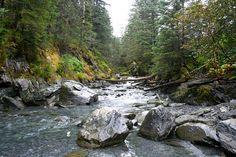A river runs through it. Photo: Nancy Johnson