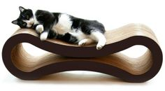 Is this the best cat product you can buy?
