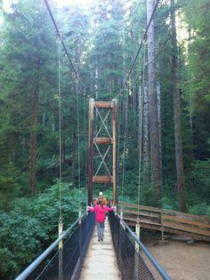 Oregon-Suspension bridge on Deer Creek hike. Near Lincoln City Oregon Road Trip, Oregon Travel, Travel Usa, Oregon Usa, Oregon Coast, Places To Travel, Places To See, Lincoln City Oregon, Oregon Washington