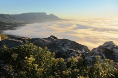 On Ou Kaapse Weg one misty morning - Cape Town.ask any Argus Race cyclist or Two Oceans marathon runners about the Ou Kaapse Weg! Namibia, Table Mountain, Marathon Runners, West Lake, Most Beautiful Cities, Places Of Interest, Great Memories, Nature Reserve, African Beauty