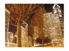 Millenium Park in December