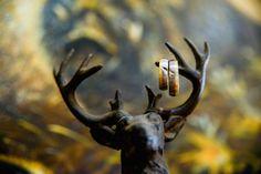 Start in die Jagdsaison