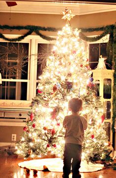 Glowing christmas tree: Canon Rebel T1i  ISO 3200  f/1.8  ss 1/30th