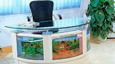 Extremely Perfect Creativity of Office Fish Tank