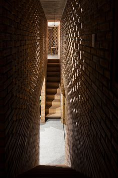 Galeria de Casa Termiteiro / Tropical Space - 3