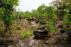Discover the world through photos. Congo, Caves, Garden Bridge, Outdoor Structures, World, Blanket Forts, The World, Cave
